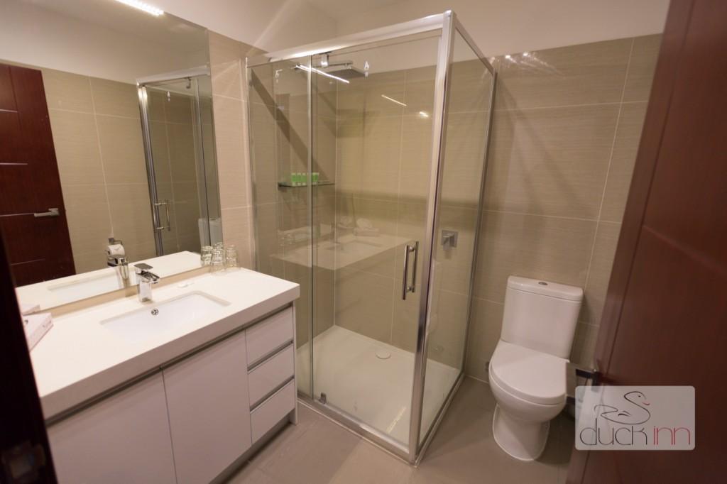 Duck Inn bathroom 2013